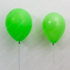 Сравнение размеров 12 и 10 дюймового шарика с гелием